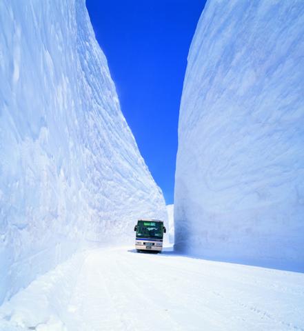 雪の大谷.png